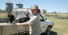 Aussie farmers and their dogs big users of diesel pickups